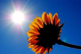 I've Got Sunshine...on