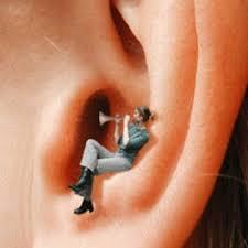 Les acouphènes dans les oreilles ...