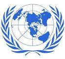 cited the United Nations'
