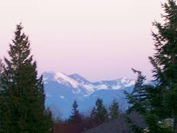 Sammamish, WA : Mt Rainier and