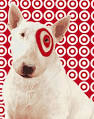 BRAND OF THE WEEK: Target