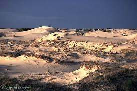 Monahans Sandhills State