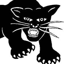 The Black Panther Party in