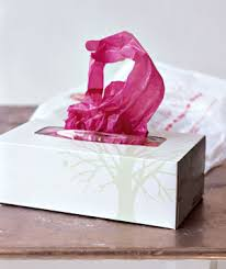 Tissue Box as Grocery Bag