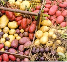 Agriculture, Potato Prices